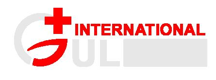 Gulmag International | Surgical Instruments | Dental Instruments